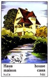 Cigánska karta Dom / House
